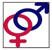 பெண்களுக்கு எதிரான வன்முறைகளும், பெண்ணுரிமையும்,pothikai.wordpress.com-Rajani Thurai,Aruna Thurai,Trincomalee (2)